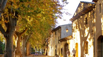 Autumn leaves in Lourmarin, Provence, France