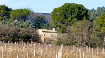 Provence in winter
