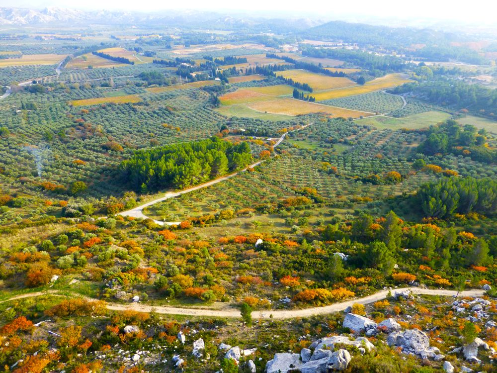 The Valley below Le Baux de Provence, famous for its wine and olives