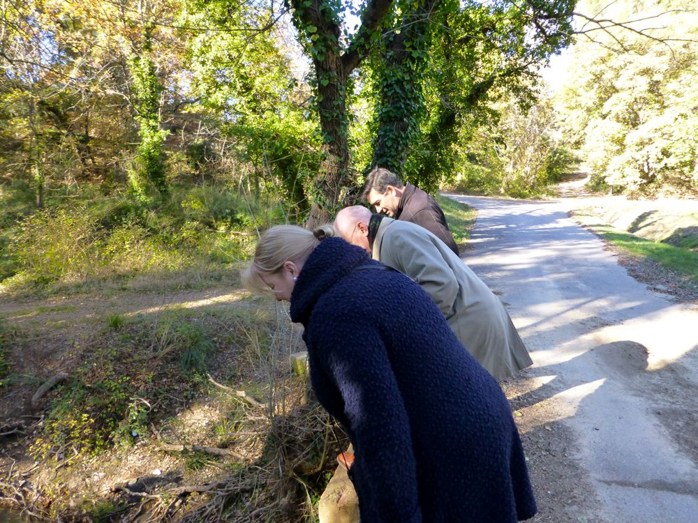 Playing Pooh sticks in Lourmarin Provence, France
