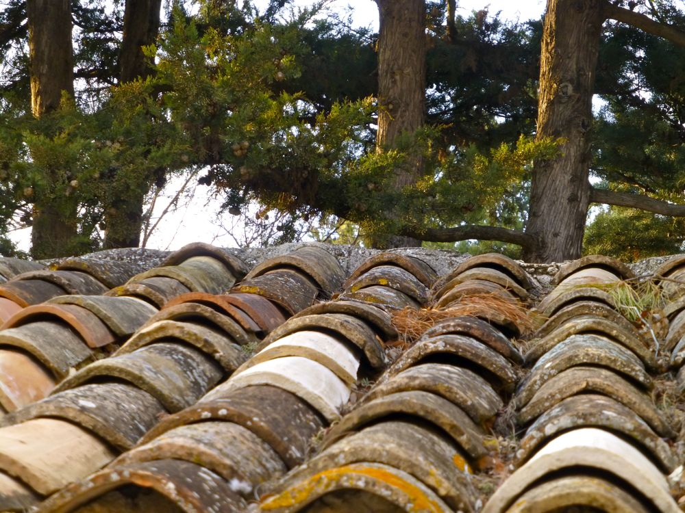 Clay tile roof in Provence