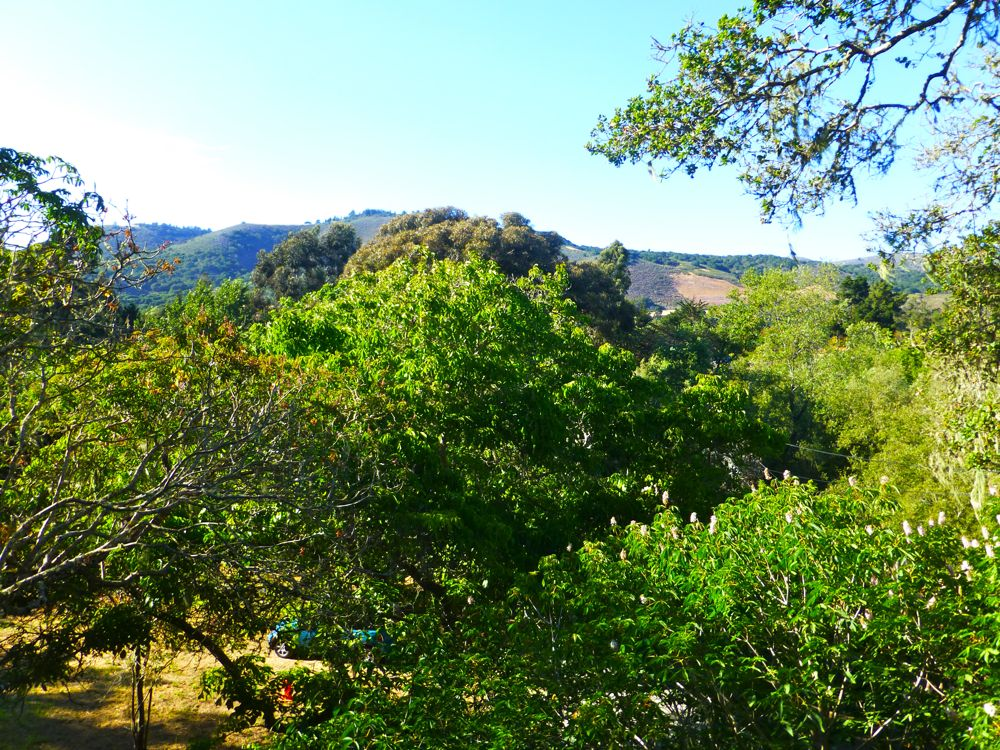 View from Carmel Valley house