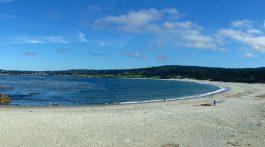 The beach in Carmel California, USA