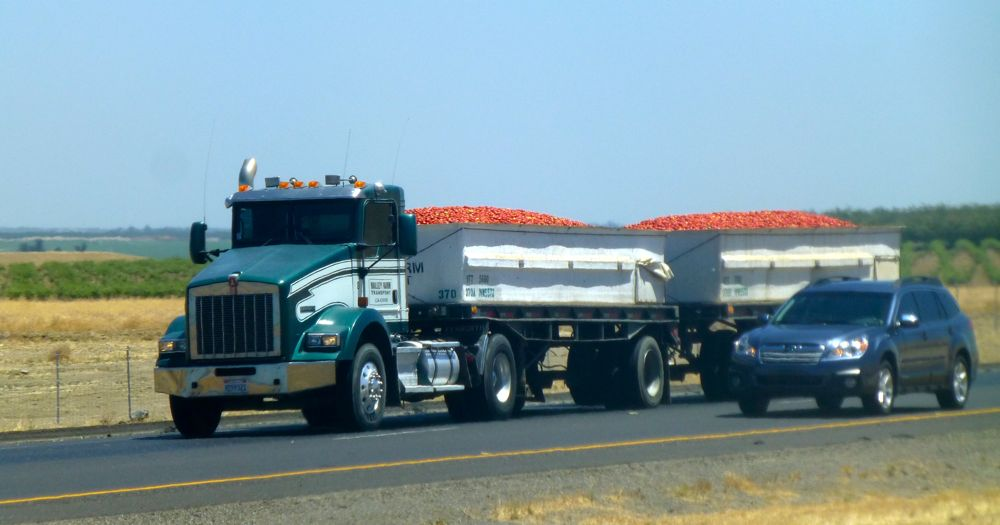 Full tomato truck on California's interstate '5'', heading north to processing plant