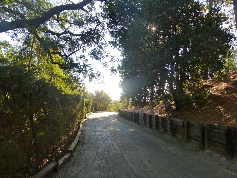Danville driveway on a morning walk, Danville CA USA