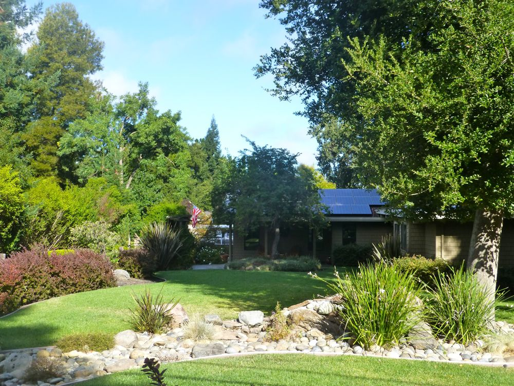 Front garden in Danville on a morning walk in Danville CA USA