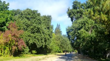 The Danville Iron Horse Trail, Danville, California, USA