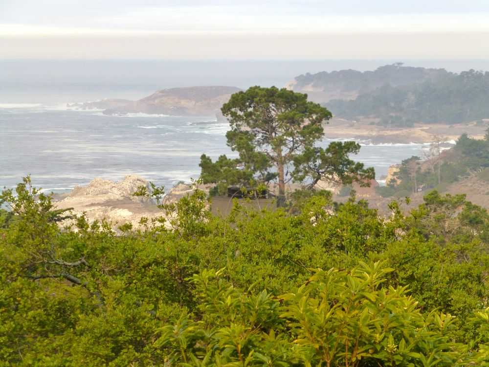 The Carmel Highlands Inn View