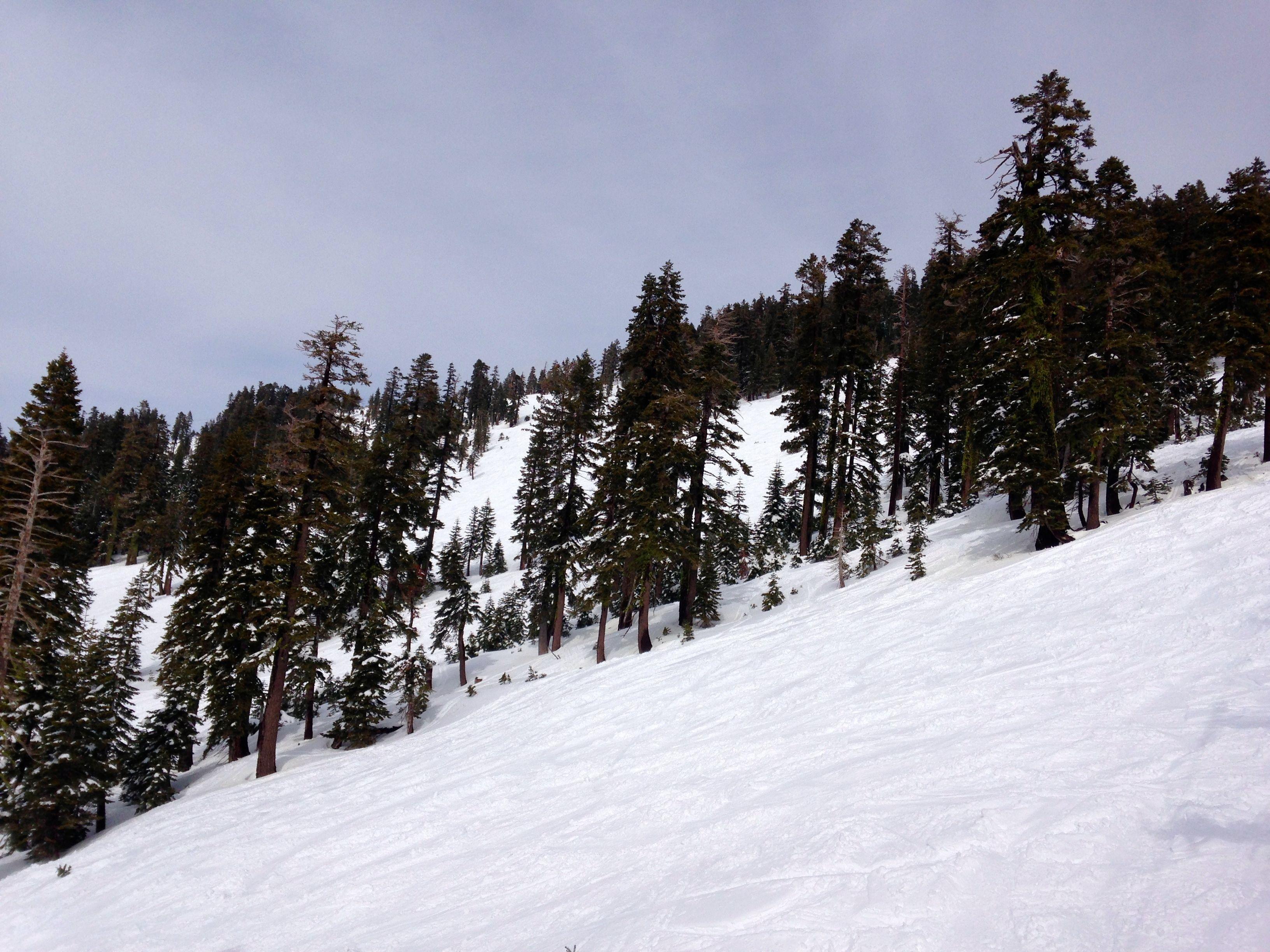 Slopes at Alpine Meadows, Lake Tahoe CA