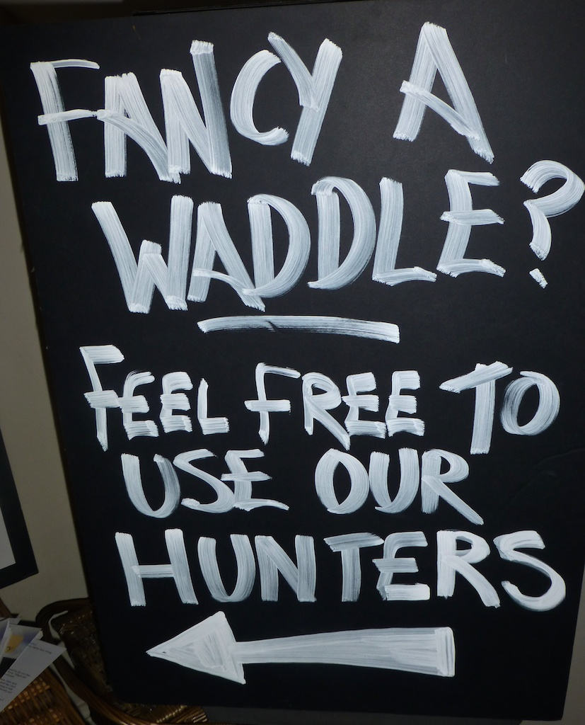 Fancy a waddle 'Hunters', to borrow at Fuzzy Duck,The Cotswolds, Gloucestershire, England