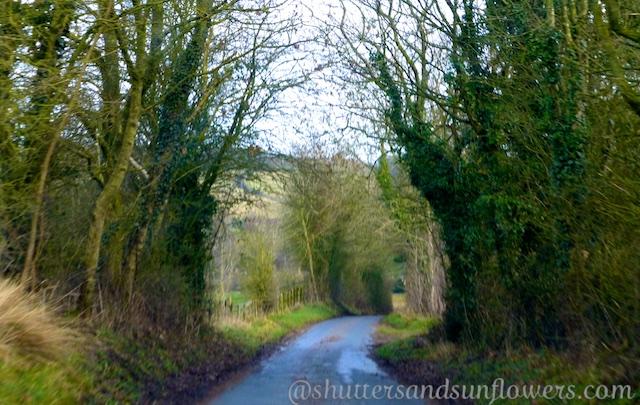 English country lanes