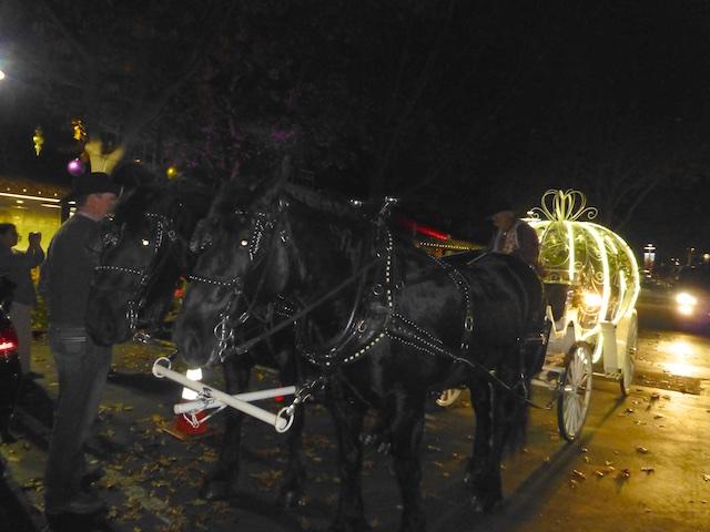 Fairy tale pumpkin carriages