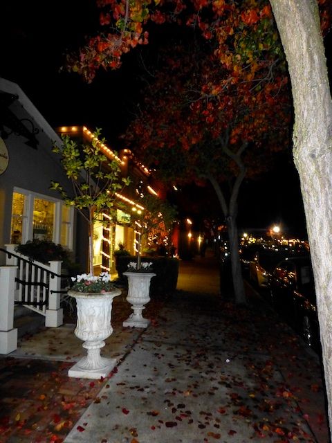Christmas shopping in Danville CA