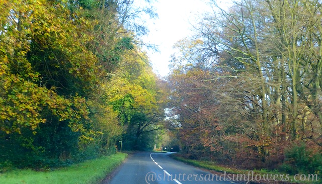 English lanes near Henley-on-Thames, Oxforshire
