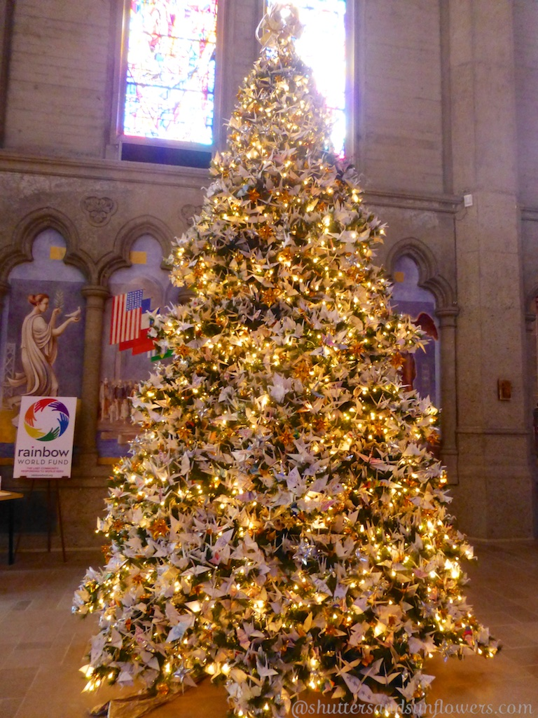 Christmas tree in Grace Cathedra