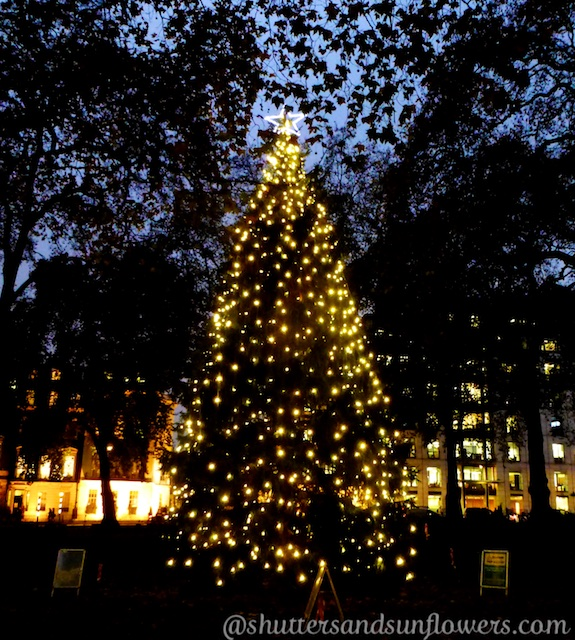 Christmas tree in Berkley Square, London
