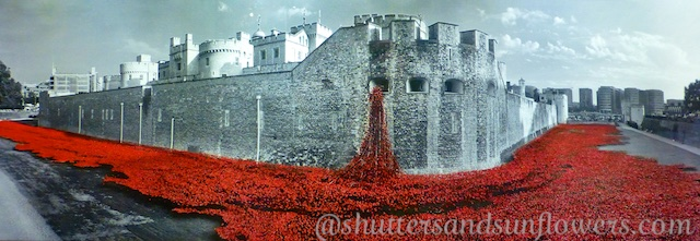 The Tower of London Poppies London to mark the centenary of WWI