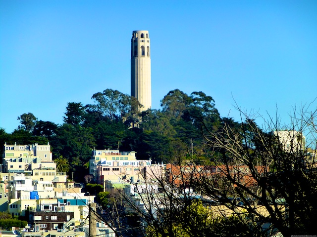 Coit Tower from North Beach San Francisco