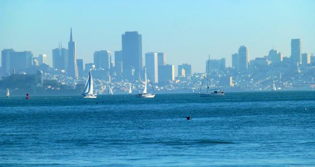 View of San Francisco from Tiburon