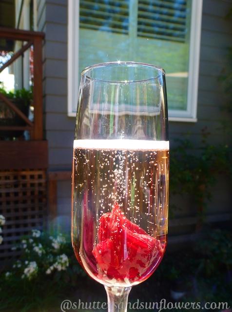 Hibiscus enthused champagne at a Californian bridal shower