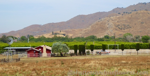 A Californian Central Valley Farmstead