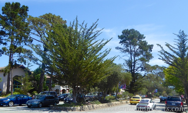 Ocean Avenue, Carmel, California