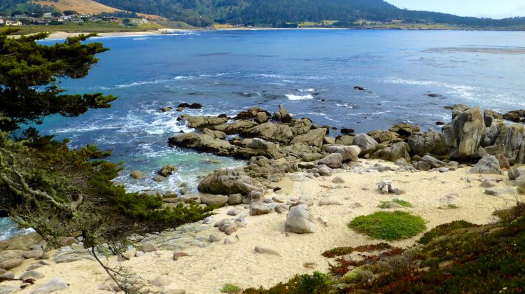 Carmel-by-the-Sea, California, USA Travel Guide PDF