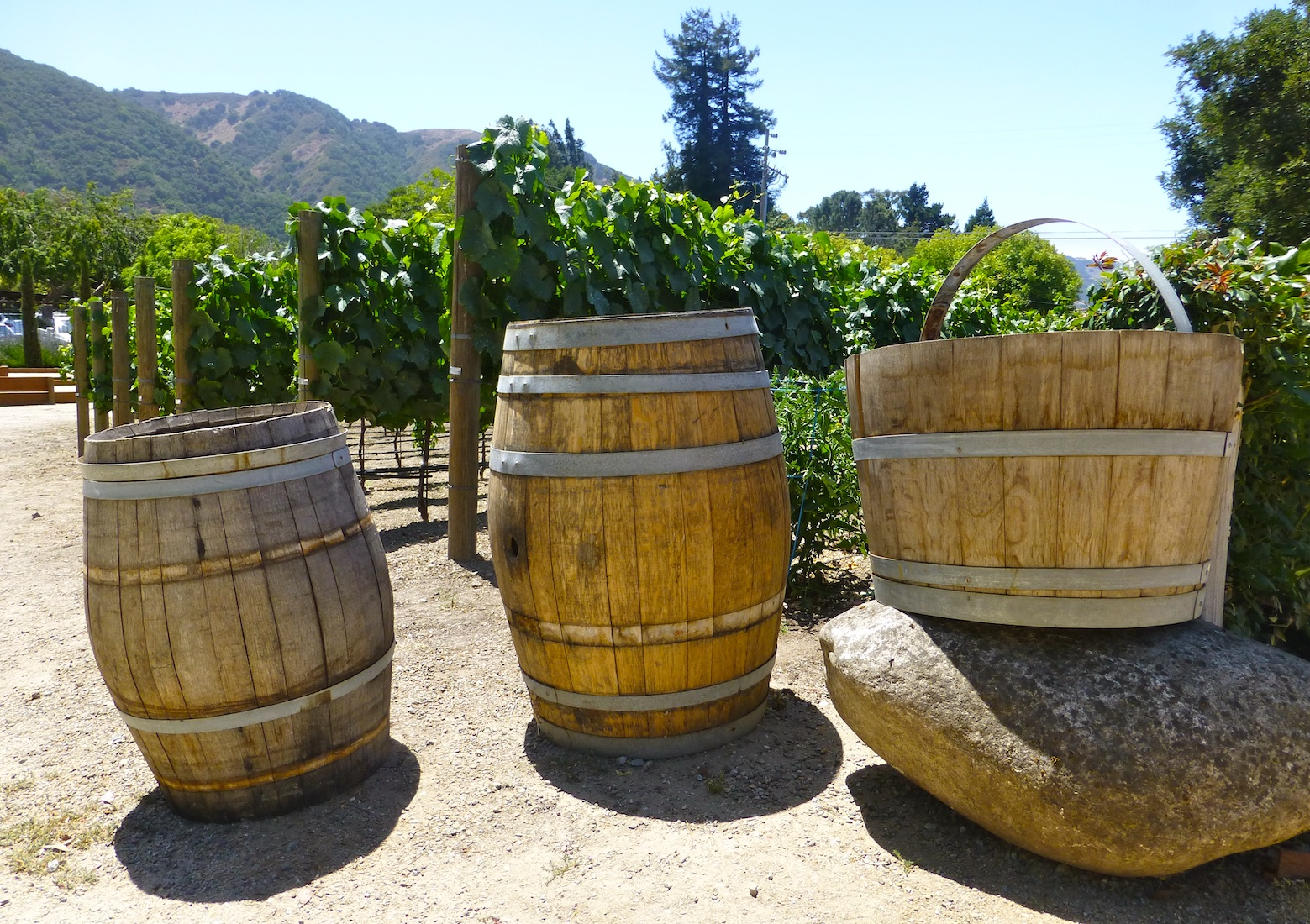 Wine tasting in Carmel Valley, California