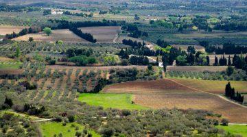 Valley 'Le Crau', the Roman 'Via Aurelia' from Les Baux-de-Provence