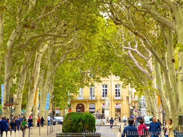 Aix-en-Provence's Tree lined avenues like Avenue Cours Mirabeau, which define Provence