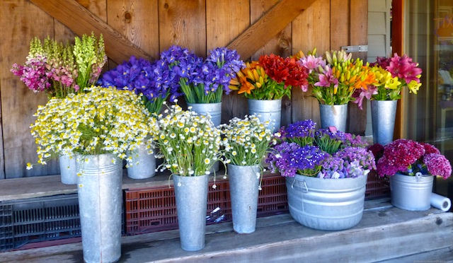 Flowers and farmers markets in Northern California