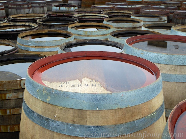 Whisky barrels at Ardbeg Distillery, Islay