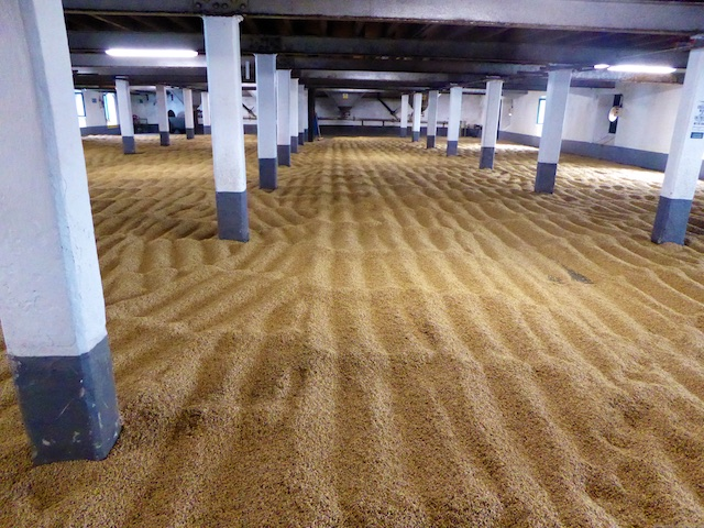 Barley malting room of Laphroaig