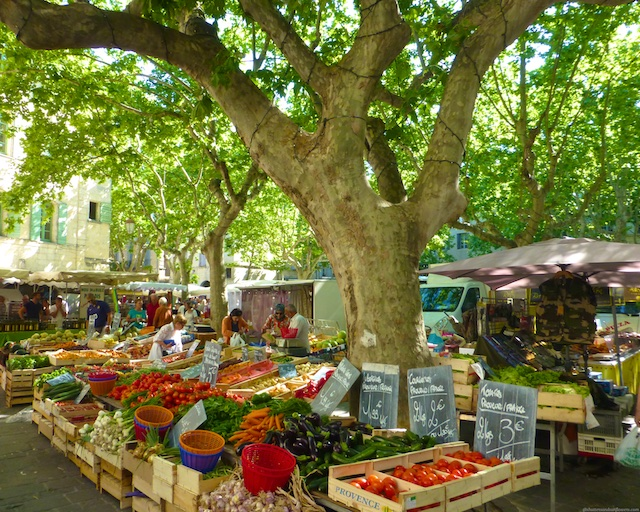 PDF Travel Guide Uzes near Provence, France