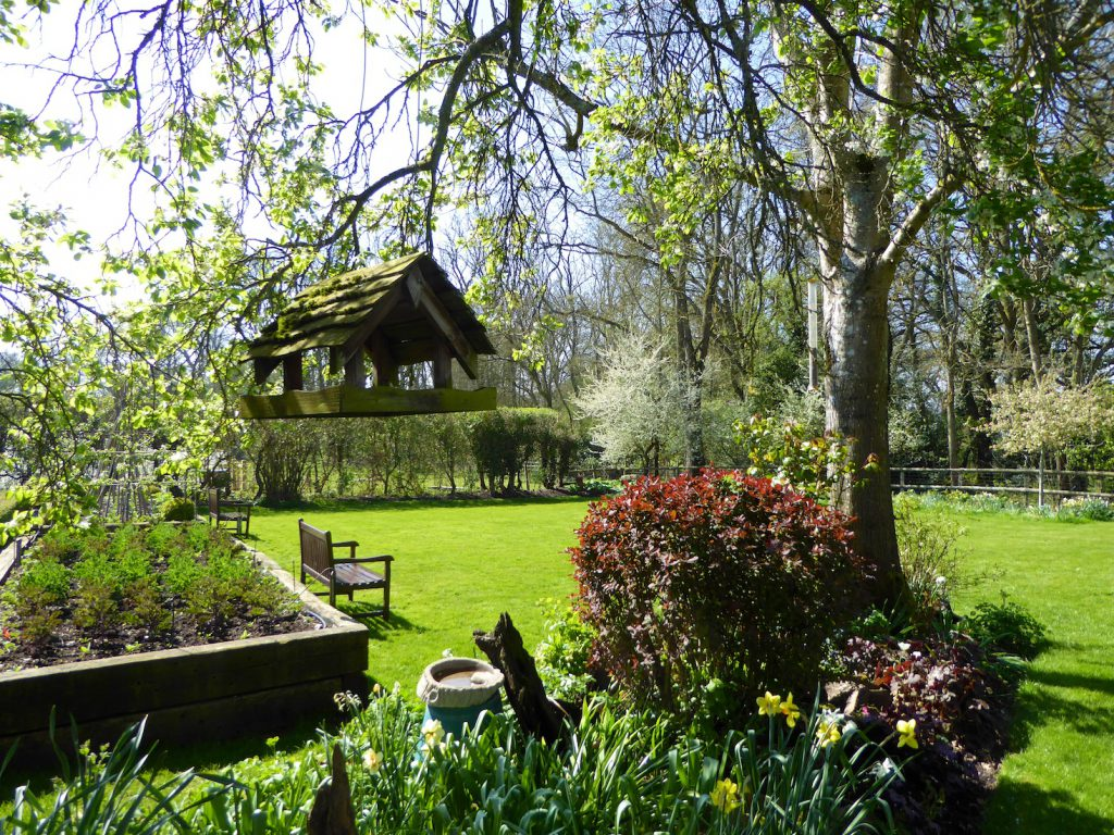 Springtime in England, an English spring garden