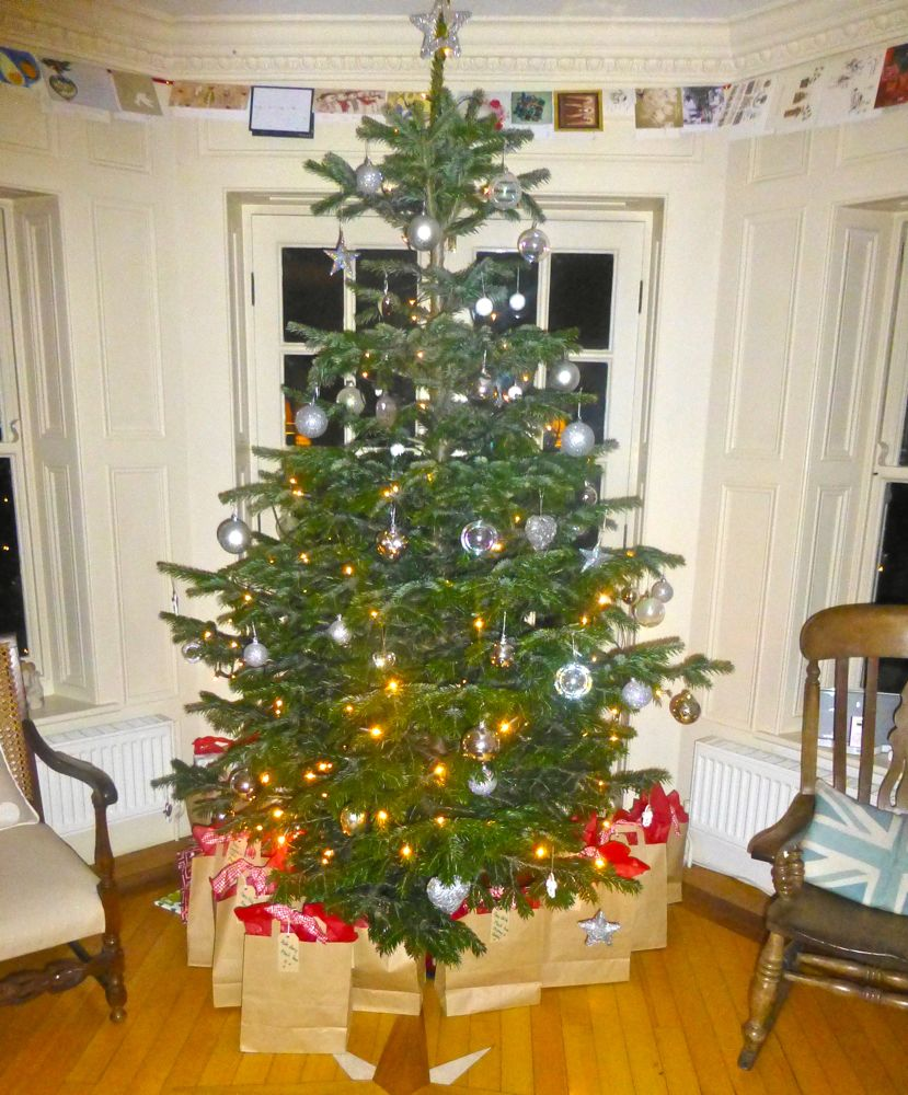 A Christmas tree in an English home, North Yorkshire, England