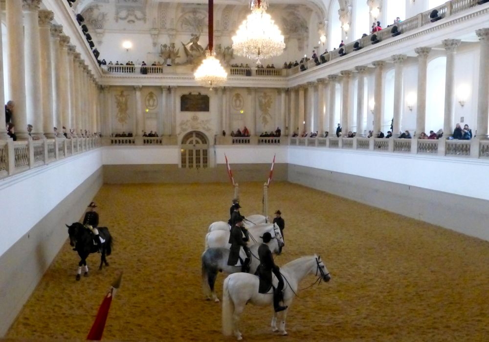 Morning exercise at Spanish Riding School, Vienna, Austria
