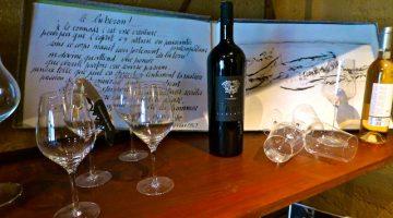 Luberon Wine tour at Domaine de Marie