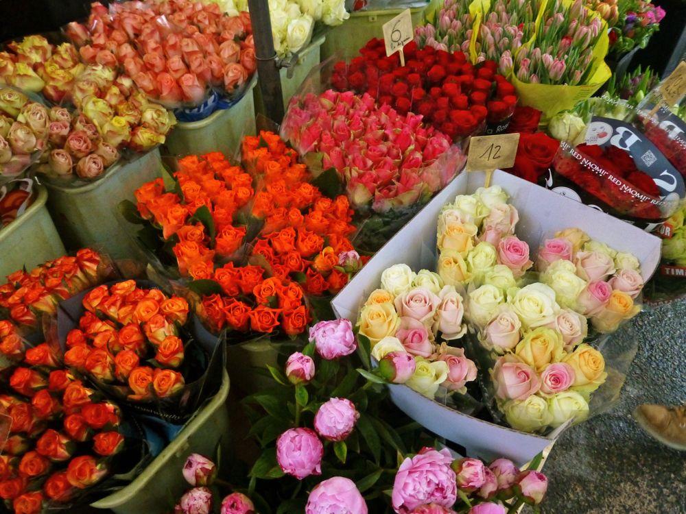 Flowers at Lourmarin's market Luberon, Provence, France