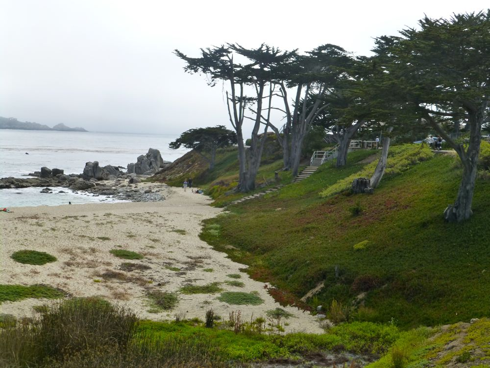 Fog at River Beach, Carmel, California