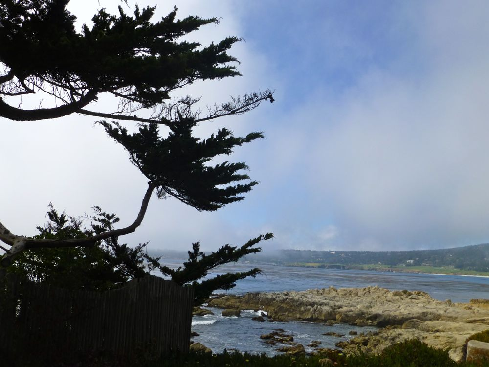 Fog rolling into Carmel Beach, Carmel, California