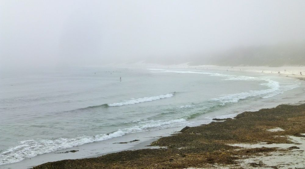 Fog settled on Carmel Beach