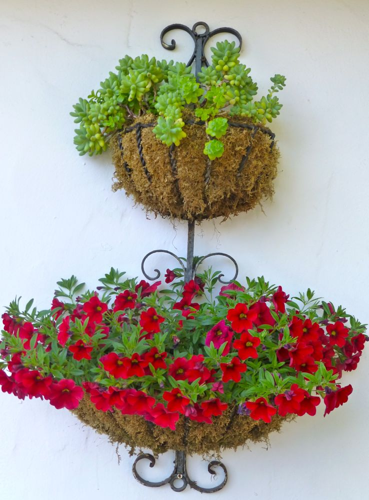 Hanging baskets in Carmel-by-the-Sea, California