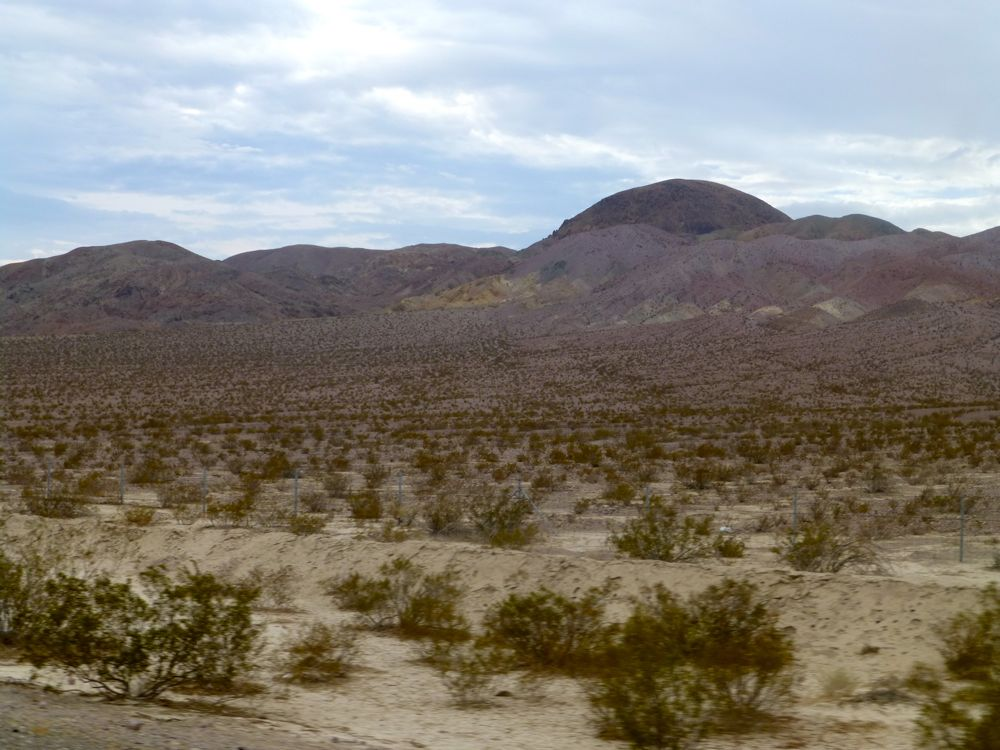 The Las Vegas Desert