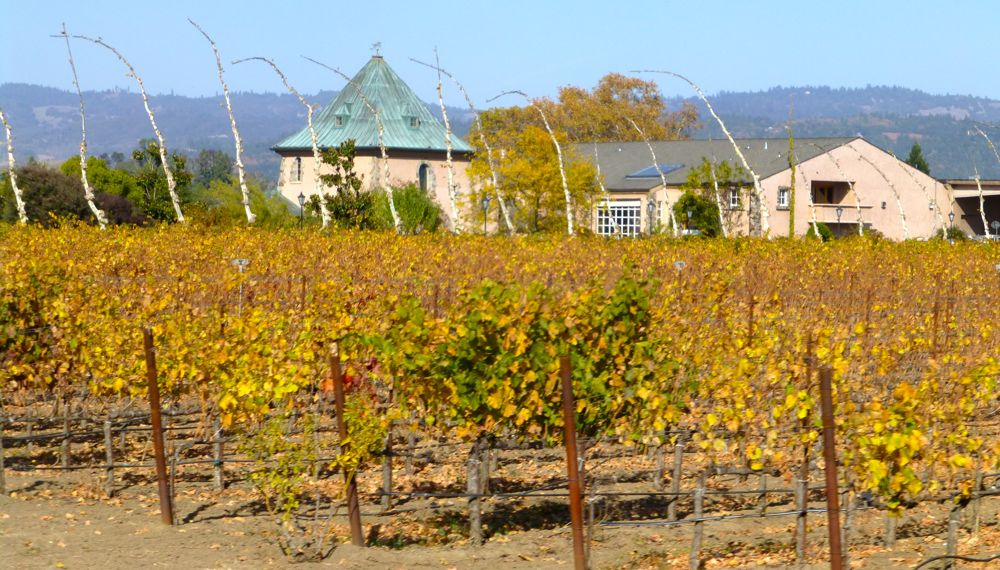 A Califorinia winery in November