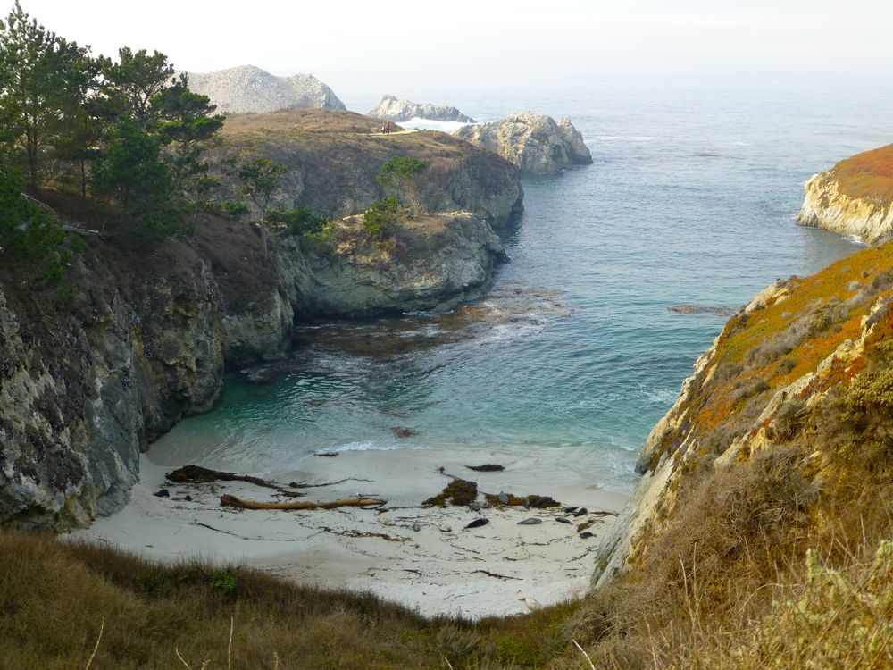 Beach near Bird Island, Point Lobos Carmel. California, USA