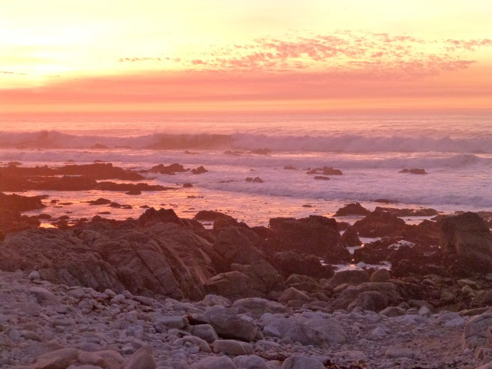 Sunset at 17 Mile Drive, Carmel, California, USA