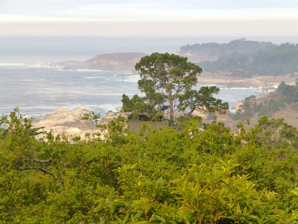 The Carmel Highlands Inn View