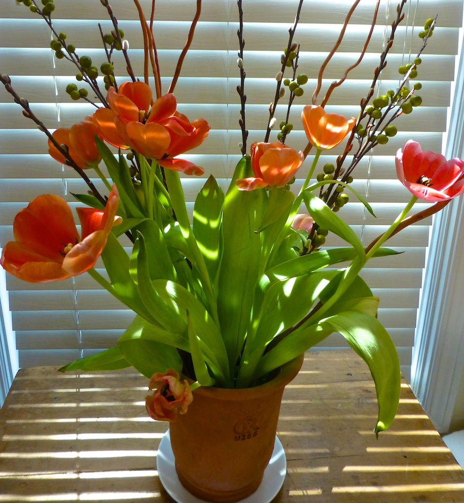 A vase of springtime tulips