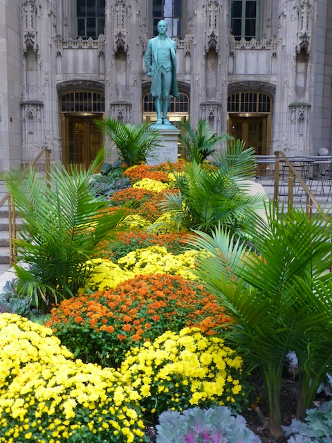 Autumn flower beds in Chicago